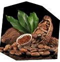 Degustace čokolády - poukaz, certifikát