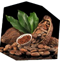 Degustace čokolády pro dva - dárkový poukaz na zážitek