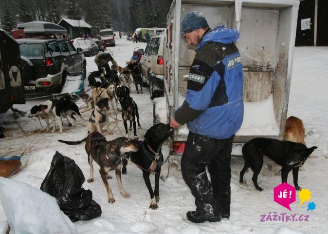 Vyjížďka se psím spřežením - dárkový poukaz