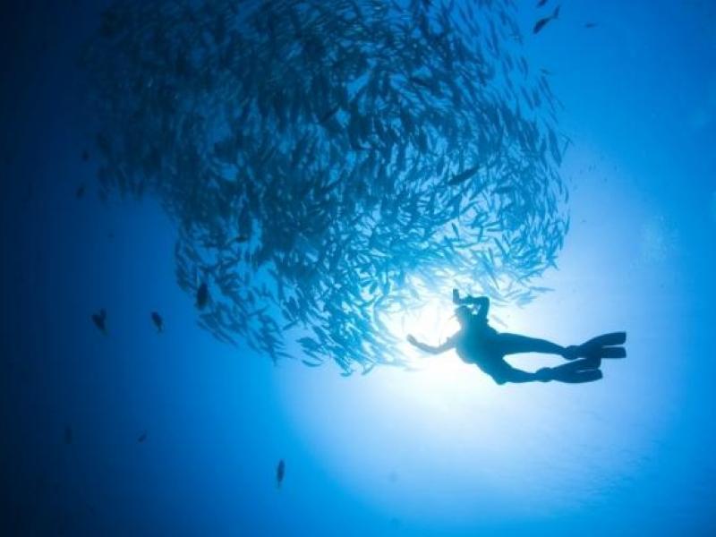 Kurz potápění - dárkový poukaz