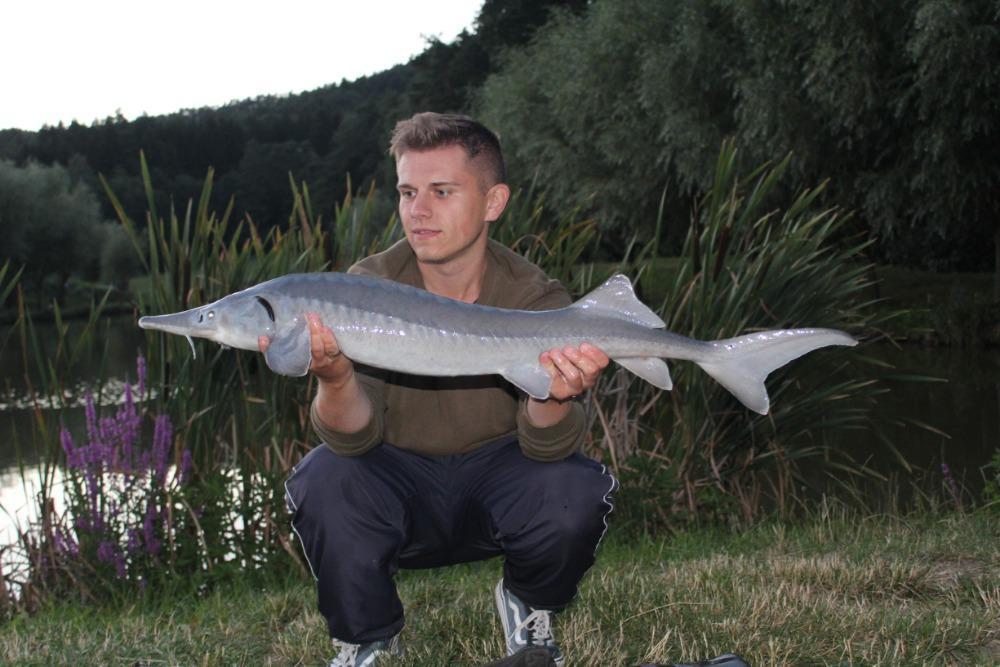 Rybaření na soukromém rybníku - dárek