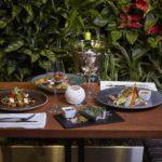 Vegetariánské degustační menu v restauraci Etnosvět - dárkový poukaz na zážitek