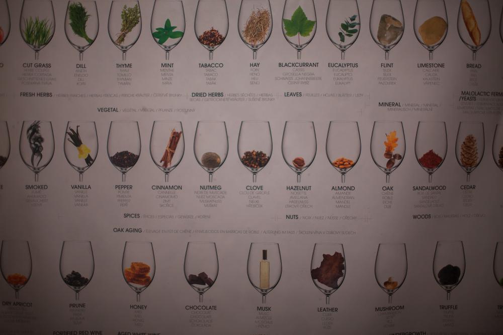 Vinařský kurz - poukaz na zážitek