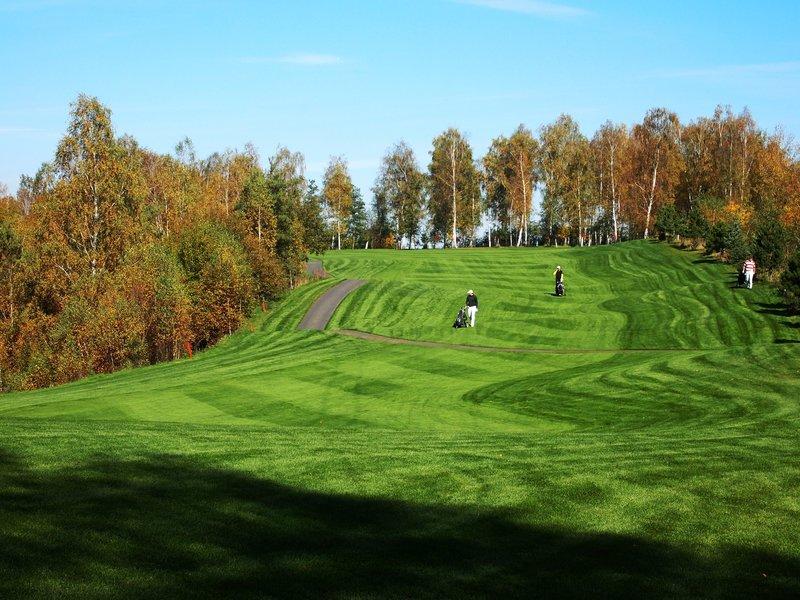 Den s golfem - certifikát