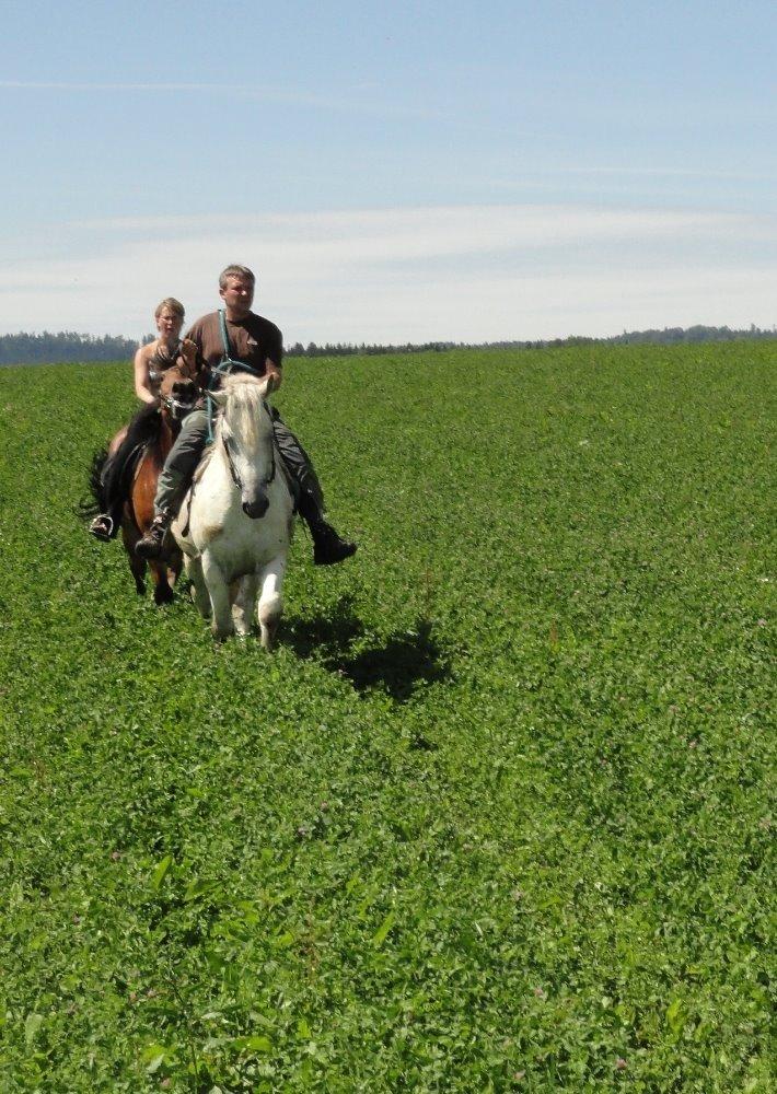 Vyjížďka na koni ve dvou - dárkový poukaz