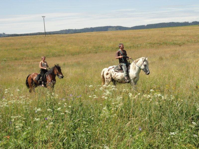 Vyjížďka na koni ve dvou - certifikát